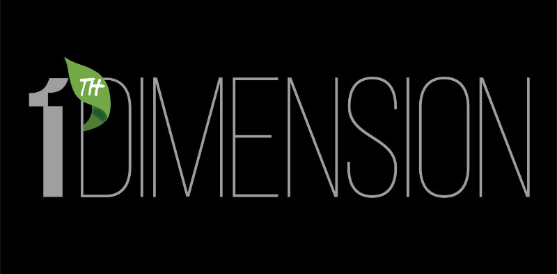 Logo 11th DIMENSION
